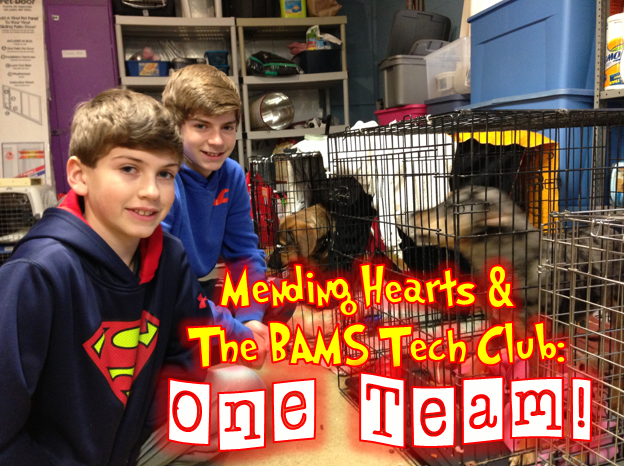 mending hearts and tech club